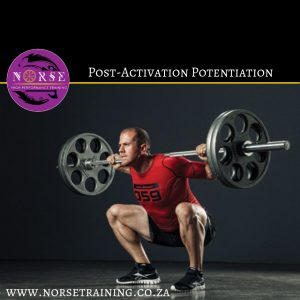 Read more about the article Piecing two puzzle pieces together to PB your Squat